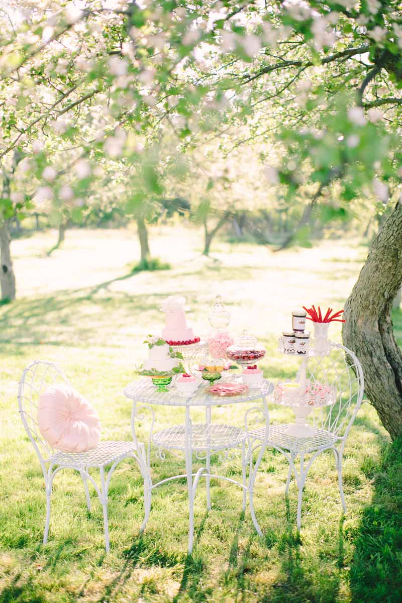 Cherry Blossom Orchard | Northern Michigan Wedding Planning and Design | Tableau Events