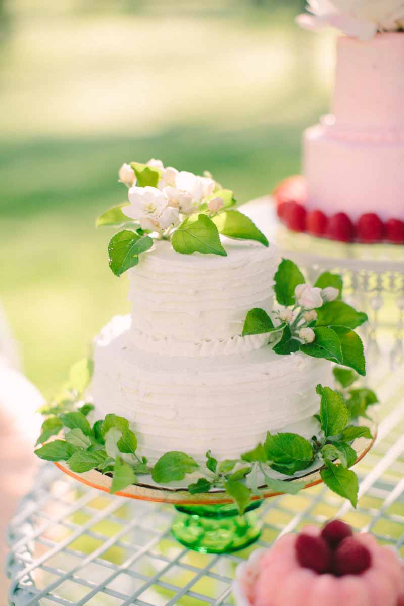 Northern Michigan Wedding Cake | Tableau Events