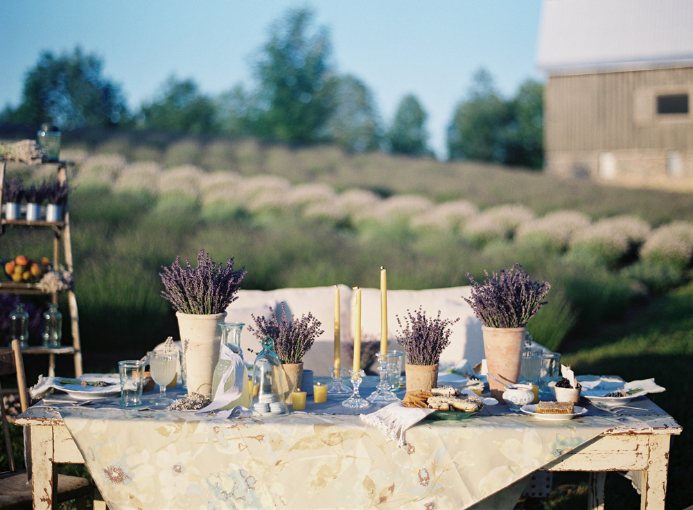 Lavender Farm Wedding | Rustic Table | Tableau Events