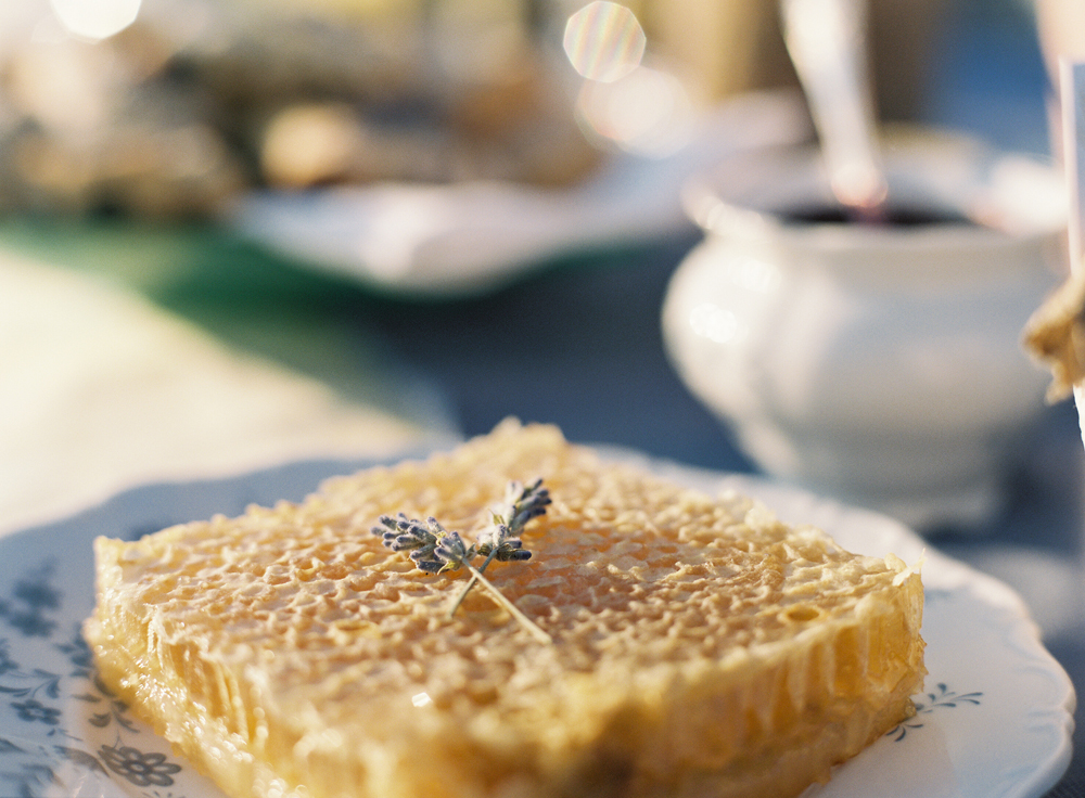 Michigan Lavender Inspiration | Northern Michigan Wedding Planning and Decor | Tableau Events