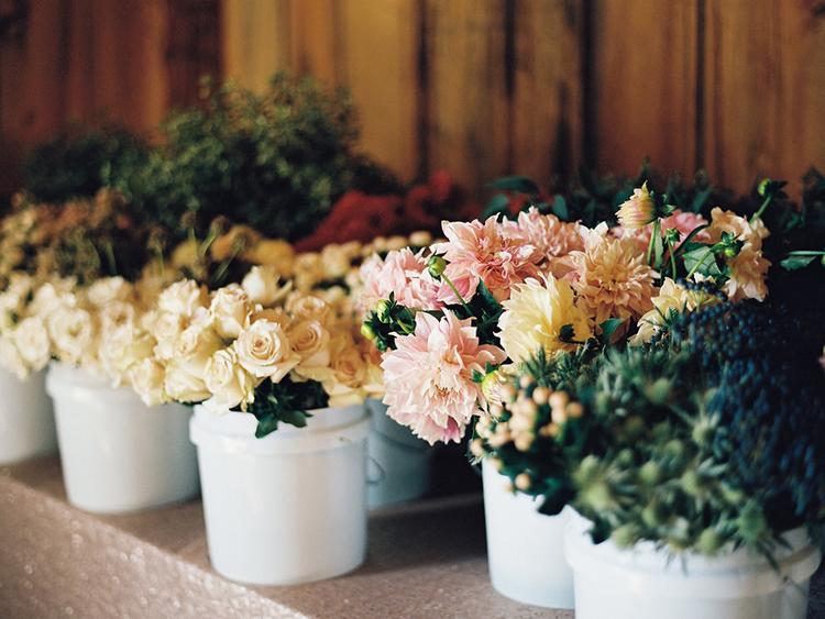 la+petite+bloom (1)